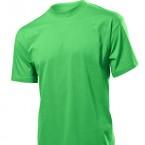 stedman-clasic-verde-deschis-303h